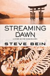 Streaming Dawn: A Story of the Fated Blades - Steve Bein