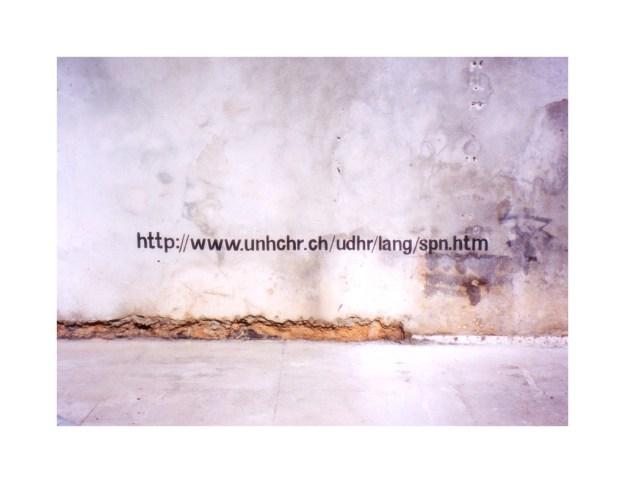 Ian Wallace- Declaration II (Havana) 2000 8 1-2x11in (border)