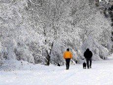 Пойдет ли снег на Рождество?