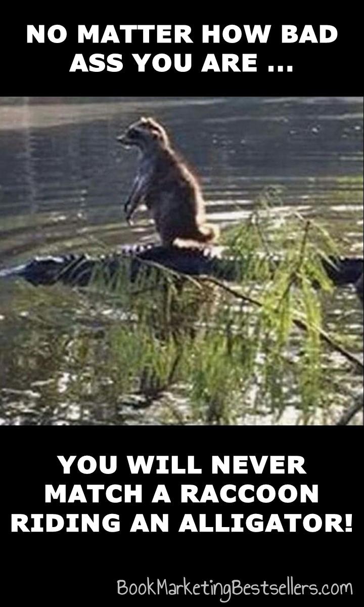 The Bad Ass Raccoon Meme: No matter how bad ass you are, you will never match a raccoon riding an alligator!