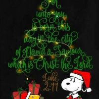 Have a Merry Christmas and a Blessed New Year
