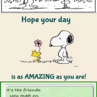 Snoopy: On Friends