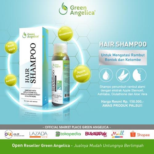 shampo rambut rontok dan ketombe green angelica nisim bio hair 123 nr hg keiskei rudy hadisuwarno