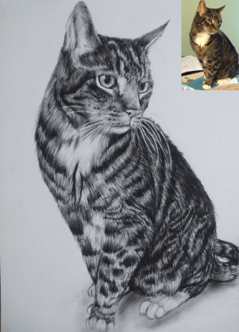 Cat portrait as Christmas gift for cat lover
