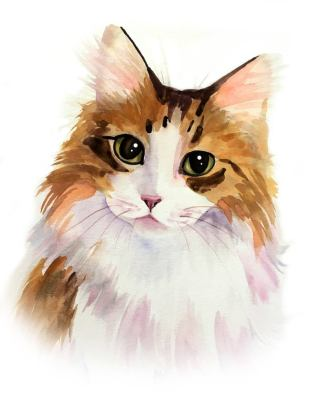 Watercolor portrait as christmas gift for cat lovers