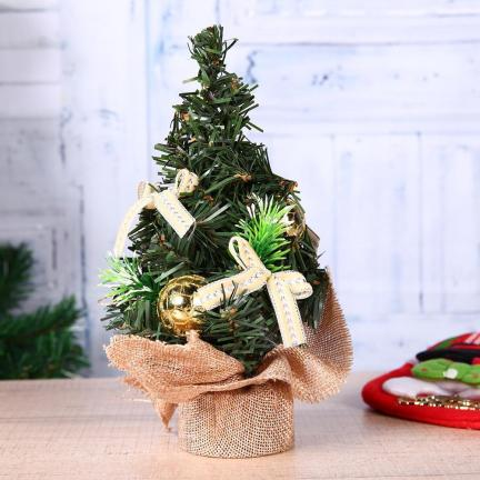 Mini Plants as christmas decoration Ideas