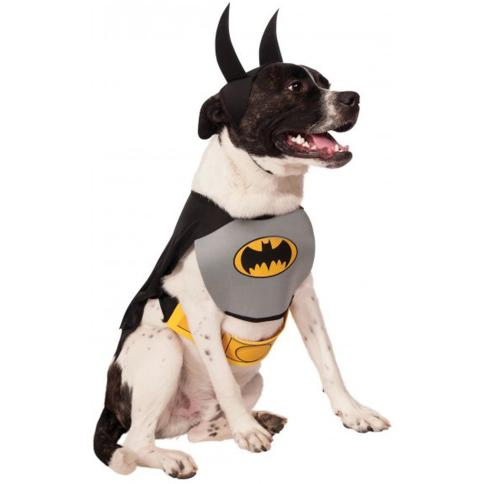 Avengers Themed Dog Costume Ideas