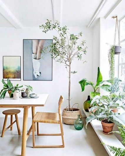 The Exuberant Green (Dining Room Decoration)