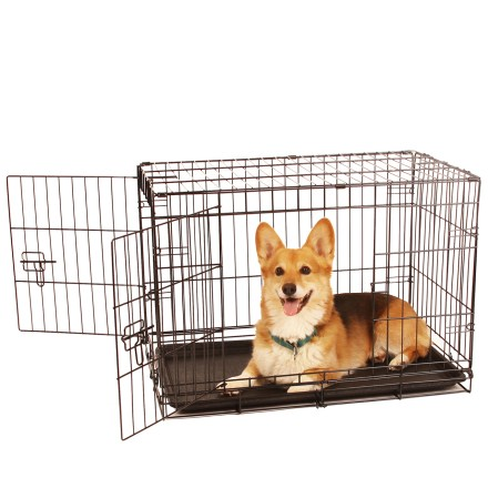 medium crates for dogs