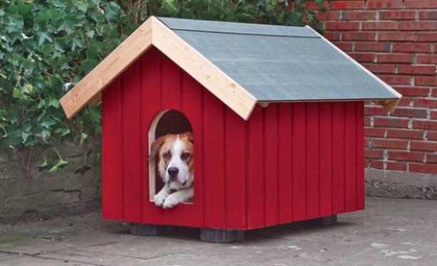 Traditional Dog House