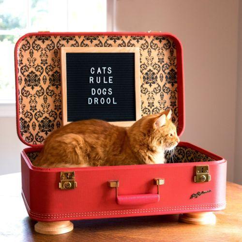 Vintage Suitcase Bed