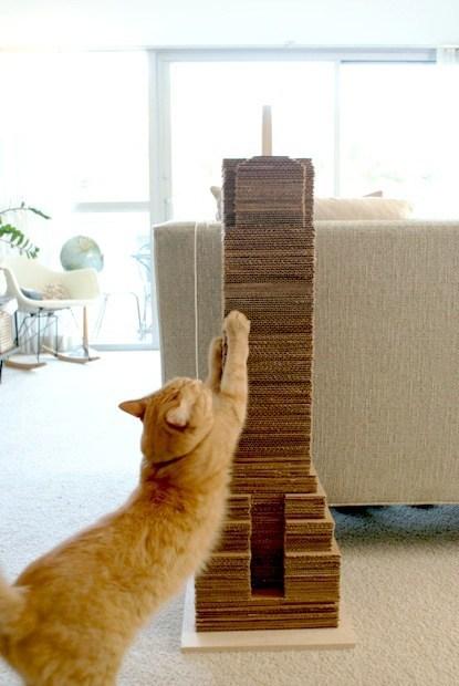 Cardboard Cat-scraper