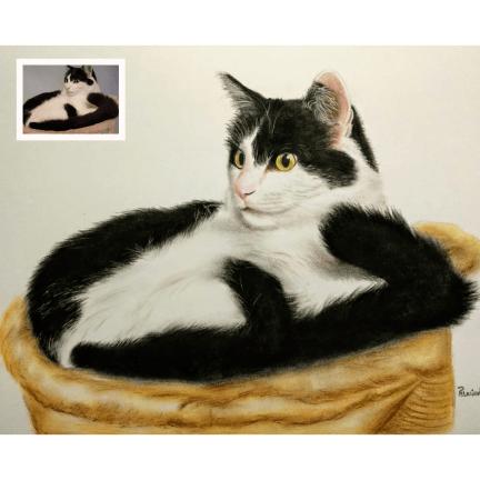 Handmade Cat Painting from Photo