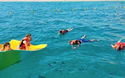 What Not to Do When Snorkeling