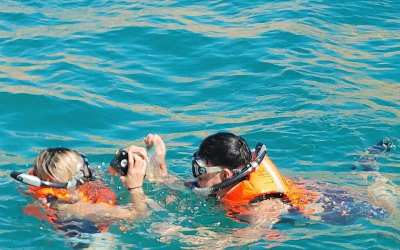 The Top Snorkeling Destinations in Cabo San Lucas