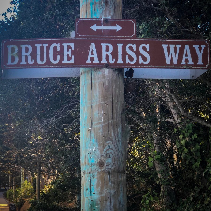 Bruce Ariss Way