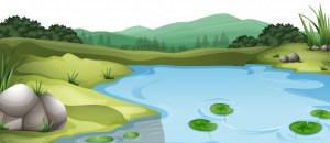 Saving the last river