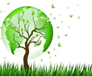 World Environment Day - A thank you note