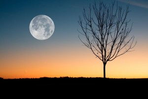 Lunar cycle - The many moods of the moon