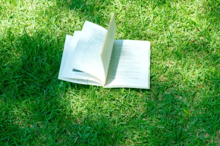 bookongrass