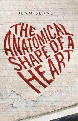 anatomical-shape-of-a-heart