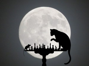 Cat & Mouse Play Chess Free Image