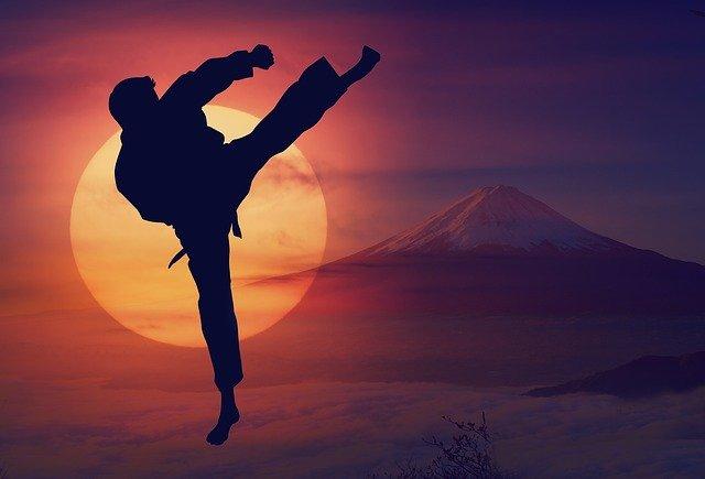 karate world champion ricardo teixeira