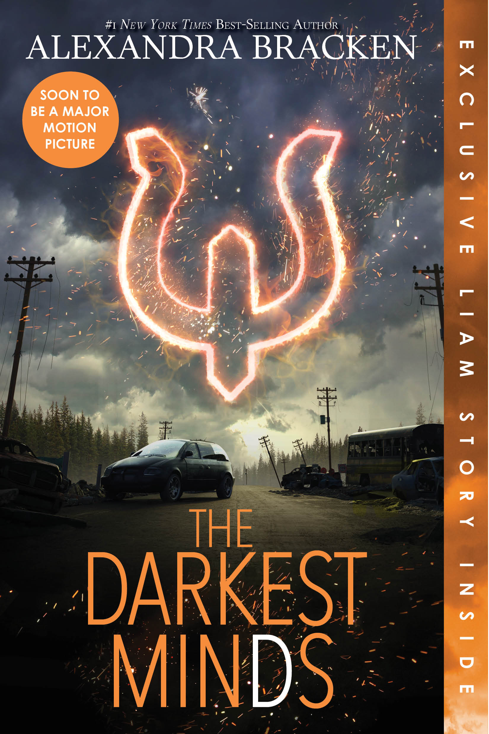 Image result for the darkest minds cover