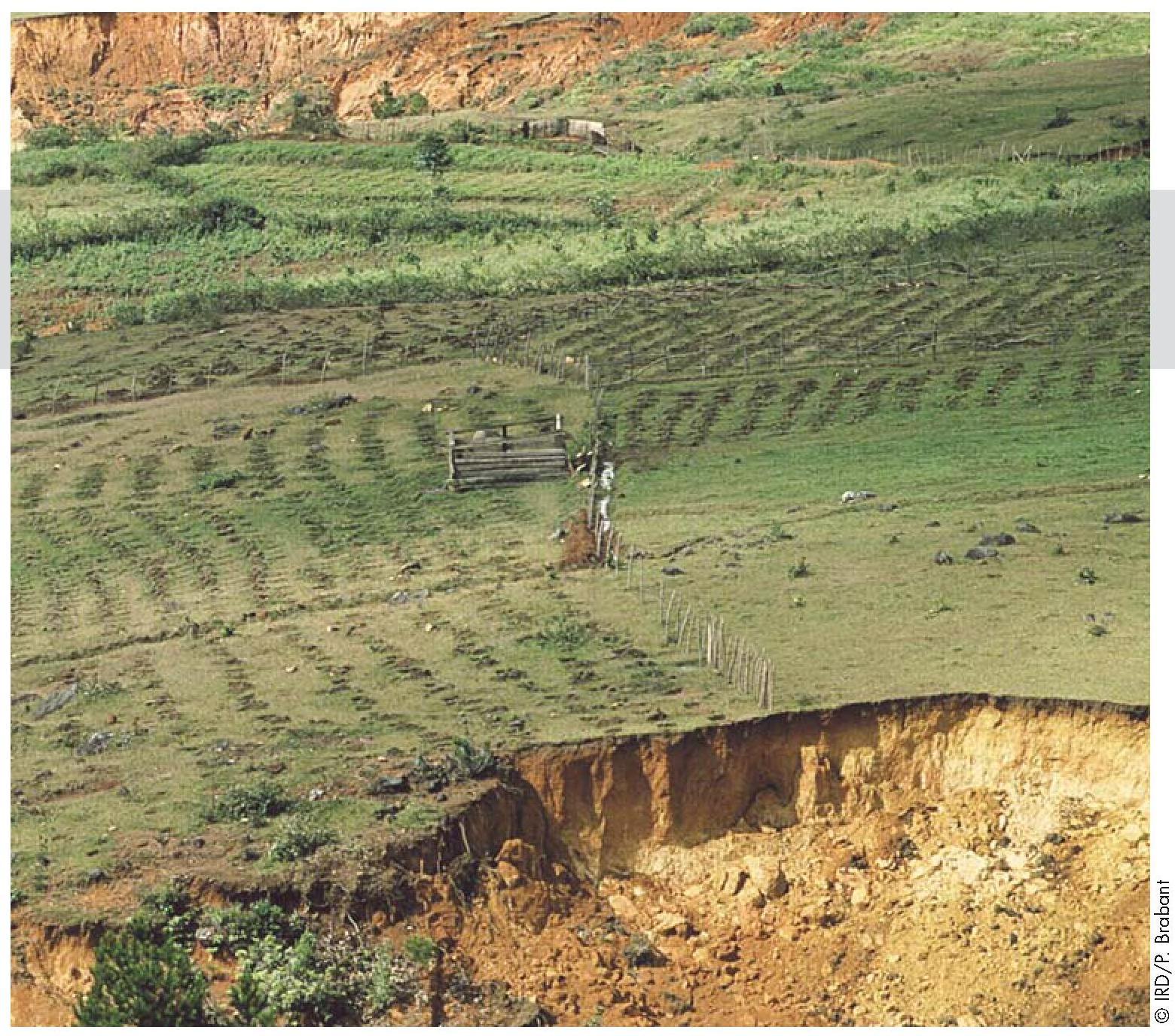 Résultats de recherche d'images pour «terre abimée par les hommes»