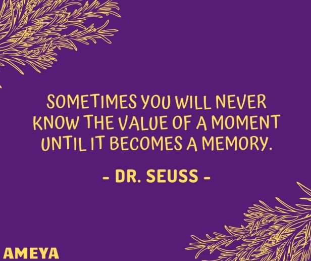 Sometimes you will never know the value of a moment until it becomes a memory. - Dr. Seuss