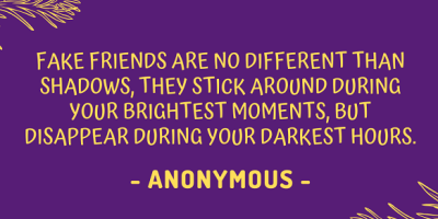 Quote about fake friends being like shadows