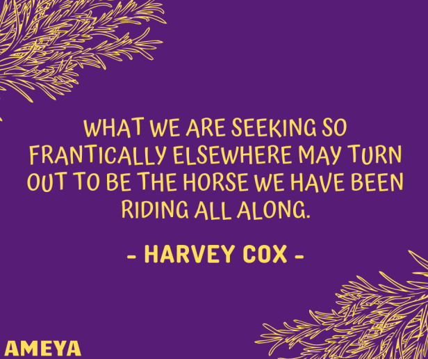 What we are seeking so frantically elsewhere may turn out to be the horse we have been riding all along. – Harvey Cox
