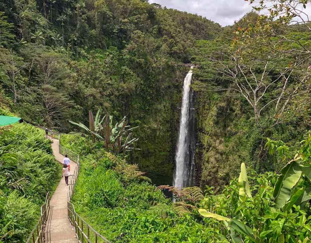 CosmopoliClan - Hawaii - Hilo area - 4