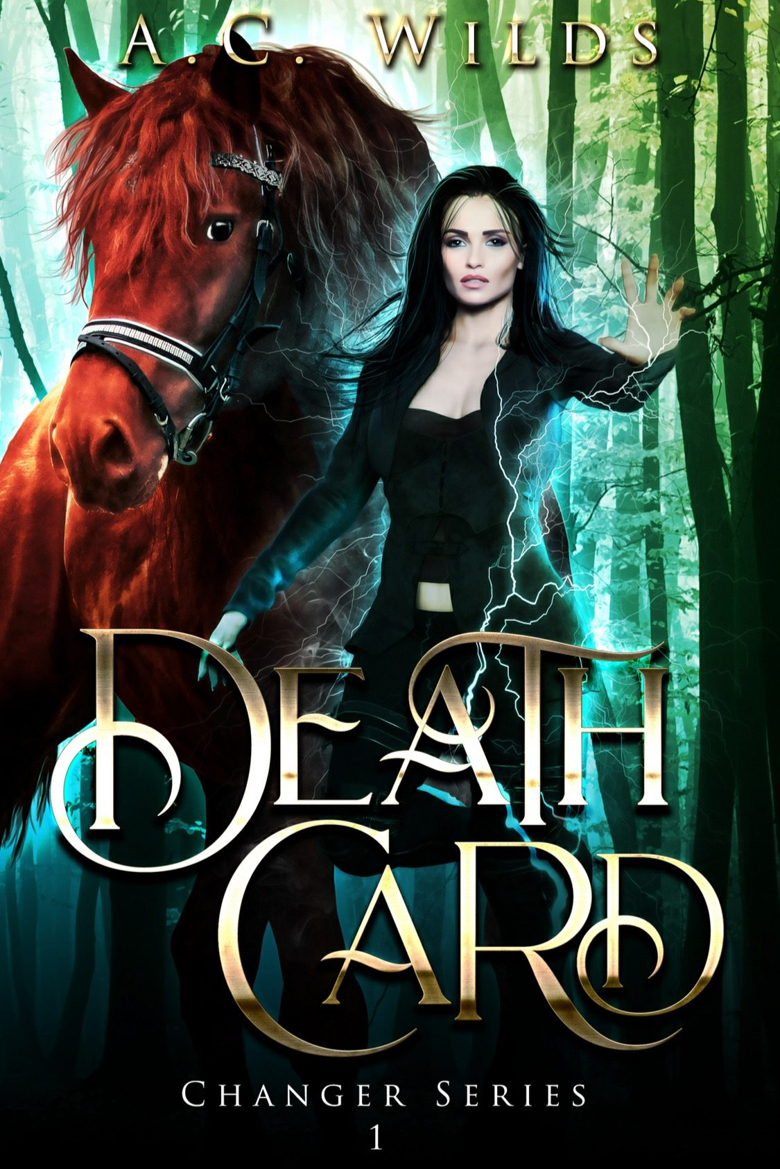Death Card *Changer Series - Book 1* by A.C. Wilds - A Book Review #BookReview #NewSeries #NewRelease #PNR #WhyChoose #RH #Fae #GreatCover