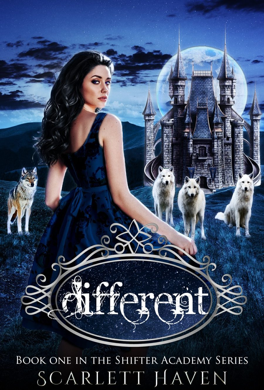 Different  by Scarlett Haven – A Book Review