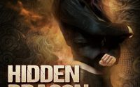 Hidden Dragon by Trudi Jaye – A Book Review