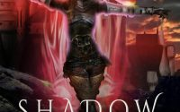 Shadow Weaver by Debbie Cassidy – A Book Review