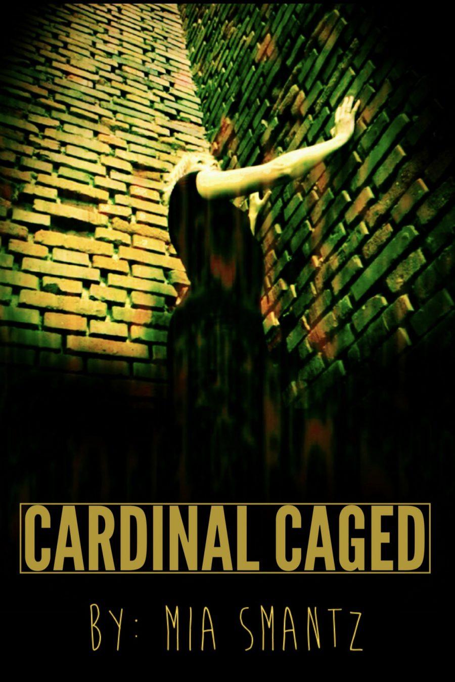 Cardinal Caged by Mia Smantz - A Book Review #BookReview #SlowBurn #RH #ReverseHarem #WhyChoose #SpyThriller #4Stars #KindleUnlimited #KU