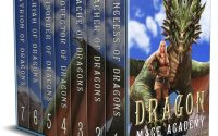 Dragon Mage Academy by Cordelia Castel – A Book Review