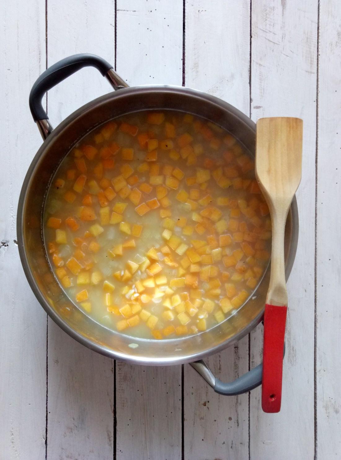 A Visit To the Aneto Factory in Cataluña + A Pumpkin Risotto Recipe