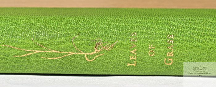 Leaves of Grass, Arion Press, Macro of Spine #1