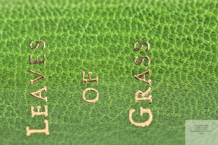 Leaves of Grass, Arion Press, Macro of Spine #2