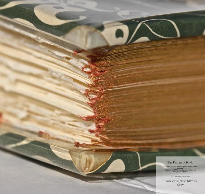 The Psalms of David, Rampant Lions Press, Book in Custom Slipcase