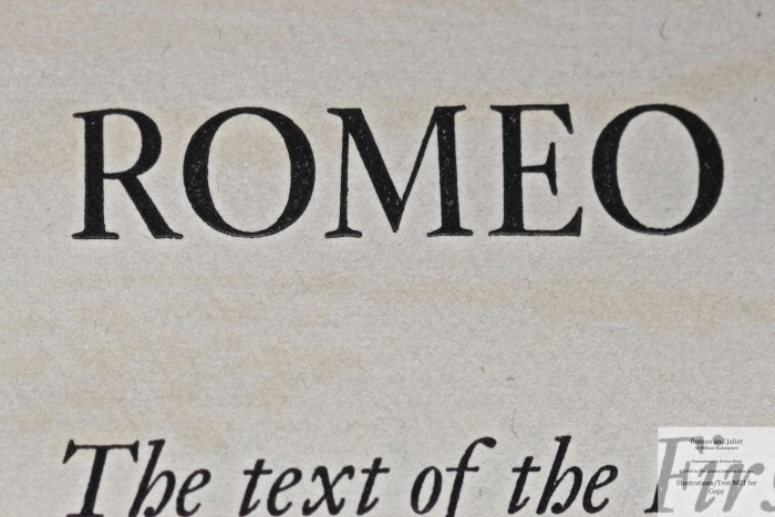 Romeo and Juliet, Allen Press, Macro of Title Page