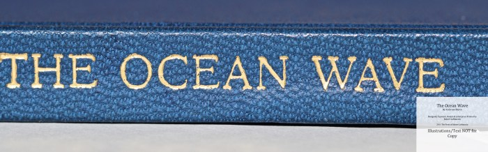 The Ocean Wave, The Press of Robert LoMascolo, Macro of Spine