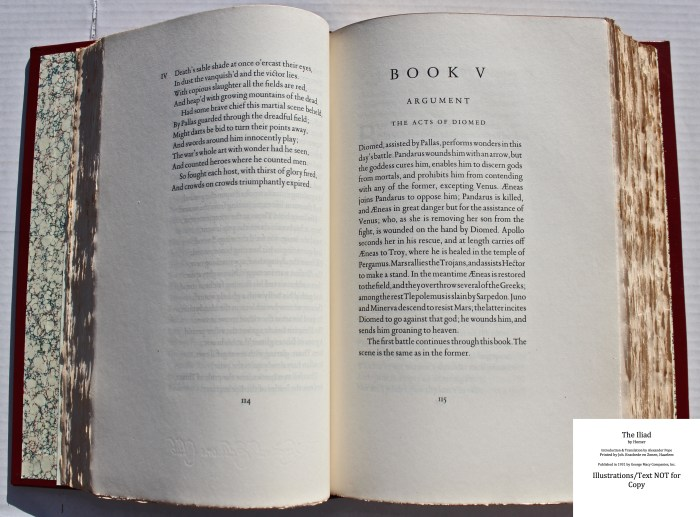 The Iliad, Limited Editions Club, Sample Text #3