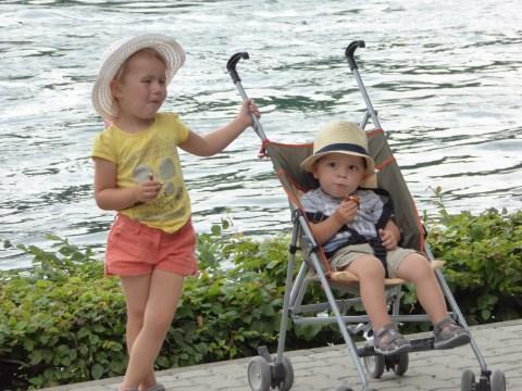 Photo 10: Fressen über Rheinfalls