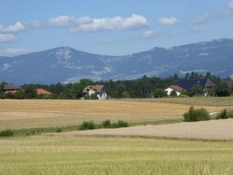Photo 23: Cycling through beautiful farmland