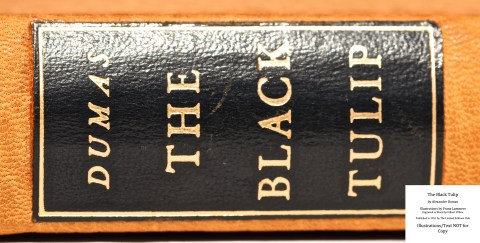The Black Tulip, Limited Editions Club, Macro of Spine