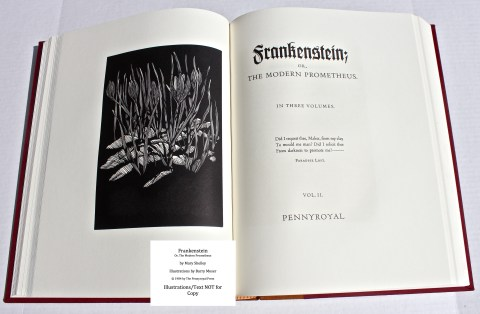 Frankenstein, Pennyroyal Press, Frontispiece and Title Page for Vol II